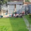 Những lưu ý khi trồng và chăm sóc cỏ nhung nhật