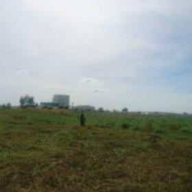 Cắt cỏ nhà máy Sữa đậu nành VinaSoy Bình Dương