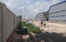 Cung cấp và trồng cây, cỏ cho nhà máy Taitan Bình Dương