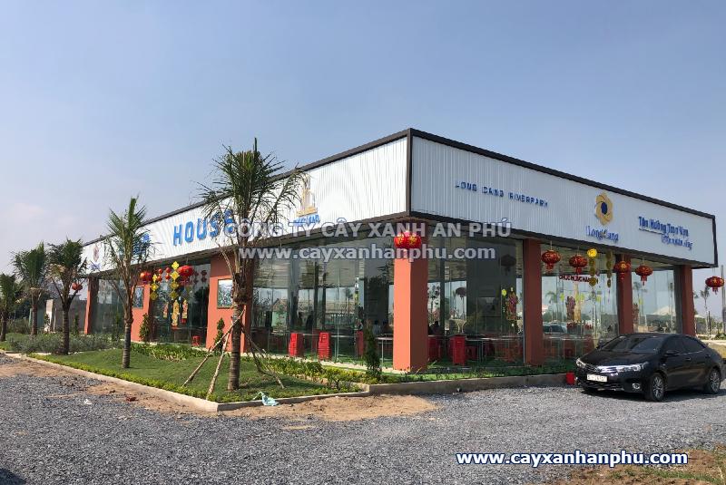 Trồng cây dự án Long Cang