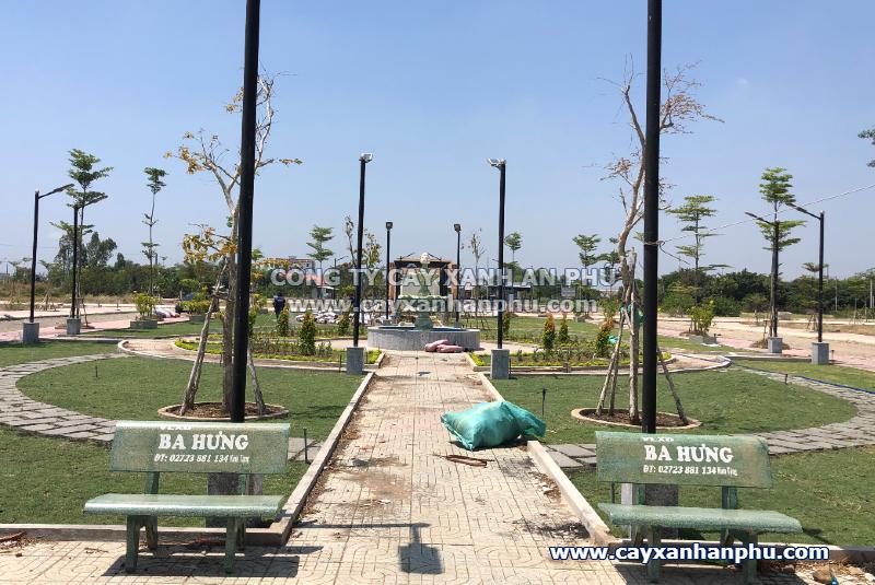 Trồng cây xanh khu dân cư tai Long An