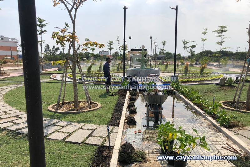 trồng cây xanh cho công viên khu dân cư
