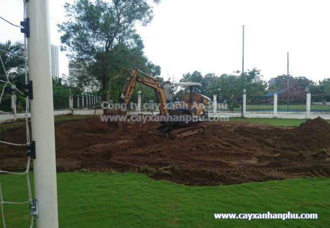 Dịch vụ cải tạo cảnh quan sân vườn tại tphcm