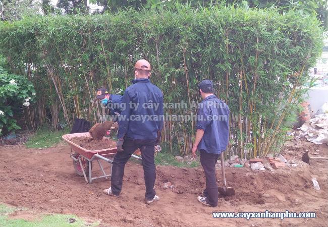 Dịch vụ cải tạo sân vườn trọn gói