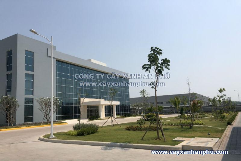 thi-cong-canh-quan-nha-may